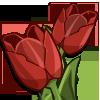 RedTulips-icon