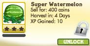 Super Watermelon Locked