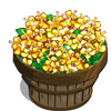 Golden Oregano Bushel-icon