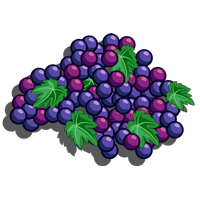 Grape Vine-icon