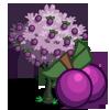 PlumTree-icon