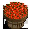 Roma Tomato Bushel-icon