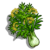 Fennel-icon