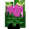 Foxglove (Spring Basket)-icon