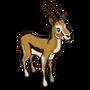Gazelle-icon