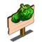 Green Kutjera Tomato Mastery Sign-icon