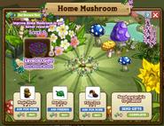 Home Mushroom Inside