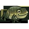 Australian Cane Toad-icon