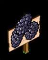MasteryBlack Berries