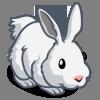 WW Arctic Hare-icon