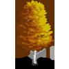 Flourishing Birch-icon