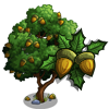Kermes Oak Tree-icon