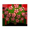 N. Tisbury Azalea-icon