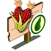 Organic Red Corn Mastery Sign-icon