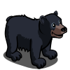 American Black Bear-icon.png