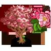 Kwanzan Cherry Tree-icon