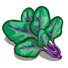 Violet Vein Spinach-icon