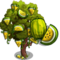Yellow Watermelon Tree-icon