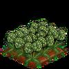 Artichokes-super