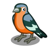 Coll Chaffinch-icon