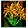 Finger Millet-icon