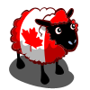 Canada Flag Ewe-icon