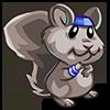 Yogic Squirrel-icon
