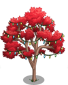 Australian Flame Tree5-icon