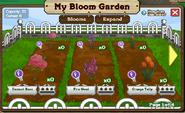 Bloom Garden Inside