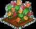 Gummi Bear 100