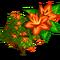 Brownea Tree-icon
