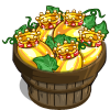 Golden King Melon Bushel-icon