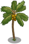 Golden Malayan Coconut Tree2-icon