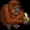 Orangutan-icon