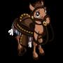 Saddle Foal