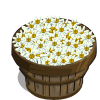 White Asters Bushel-icon