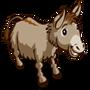 Donkey-icon