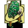 Black Elderberry Tree Mastery Sign-icon