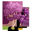 Chinese Redbud Tree-icon