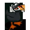 Scoter Duck-icon