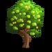 Unripened Fruit Tree-icon