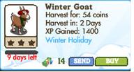 Winter Goat Market Info