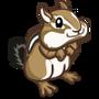 Chipmunk-icon