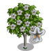 Northern Catalpa Tree-icon
