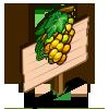 Semillon Grape Mastery Sign-icon