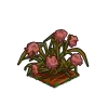 Wither Bunch Pink Carnation-icon