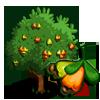 CashewTree-icon