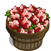 Red Australian Cotton Bushel-icon