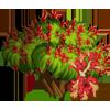 Scarlet Buckeye Tree-icon