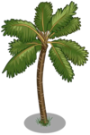 Golden Malayan Coconut Tree1-icon